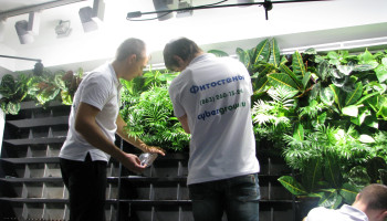 Фитостена с туманом и автополивом площадью 12 квадратных метров, Ростов-на-Дону