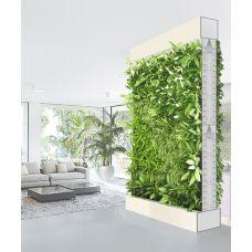 Фитоперегородка для живых растений размером 2х2 метра