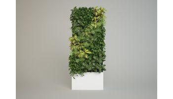 Фитошкаф для живых растений размером 2х1 метр