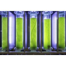 Фотобиореактор для культивирования микроводорослей Бион-10/200