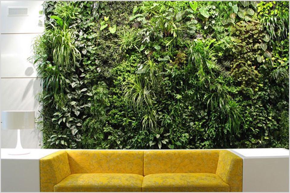 Вертикальное озеленение стены своими руками