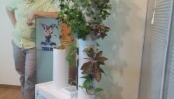 Ботанический сад нового поколения. Презентация проекта в ТПП Ростовской области