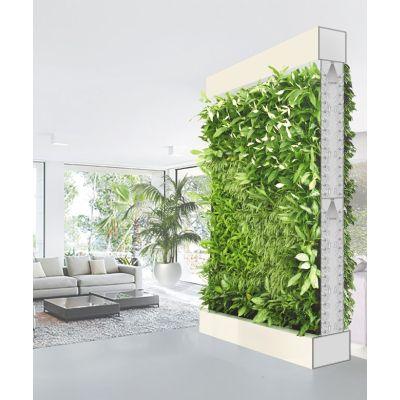 Фитоперегородка для вертикального озеленения помещений - 4 кв.м