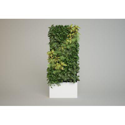 Фитошкаф для вертикального озеленения помещений - 2 кв.м