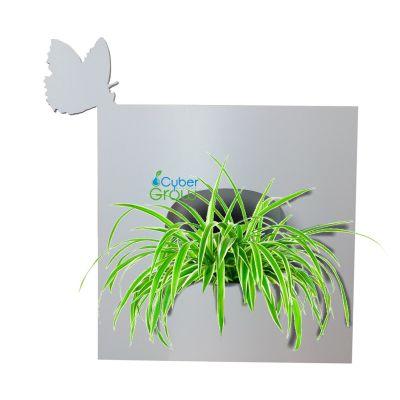 Фитобокс для живых растений